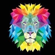 Lion Barr