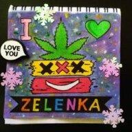 Zelenka_support